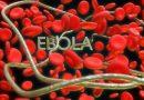 Първи случай на ебола в Конго