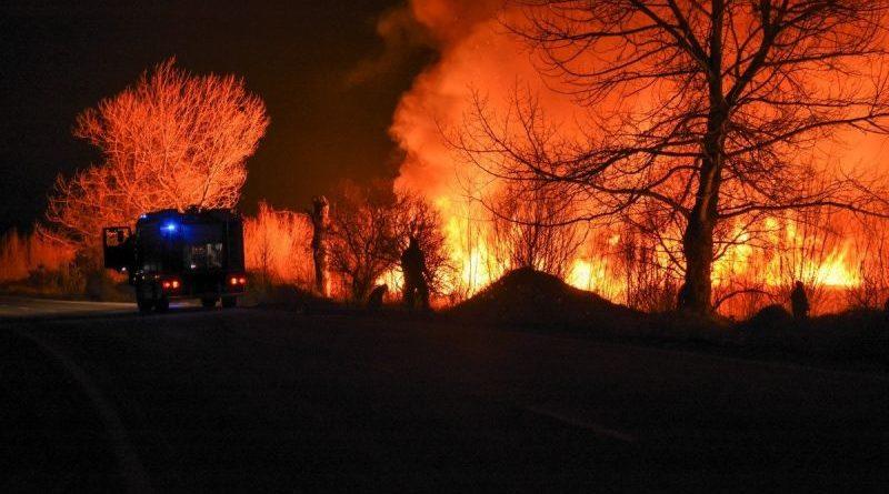 Пожар в Драгоманско блато, растения и наблюдателната кула са унищожени