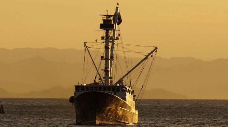Действията на ЕС не са довели до възстановяване на значими морски екосистеми и местообитания
