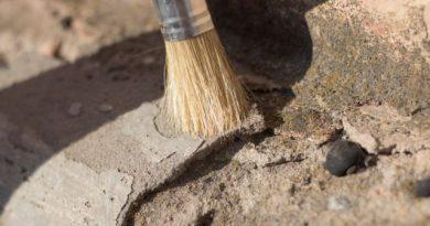 Откриха ценни археологически находки край с. Дебнево