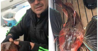 Рибар улови изключително рядка риба в Черно море